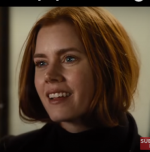 Movie Review Nocturnal Animals ~ WP 504 Hits