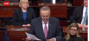 Is Senator Schumer Making a Mountain out of a Molehill