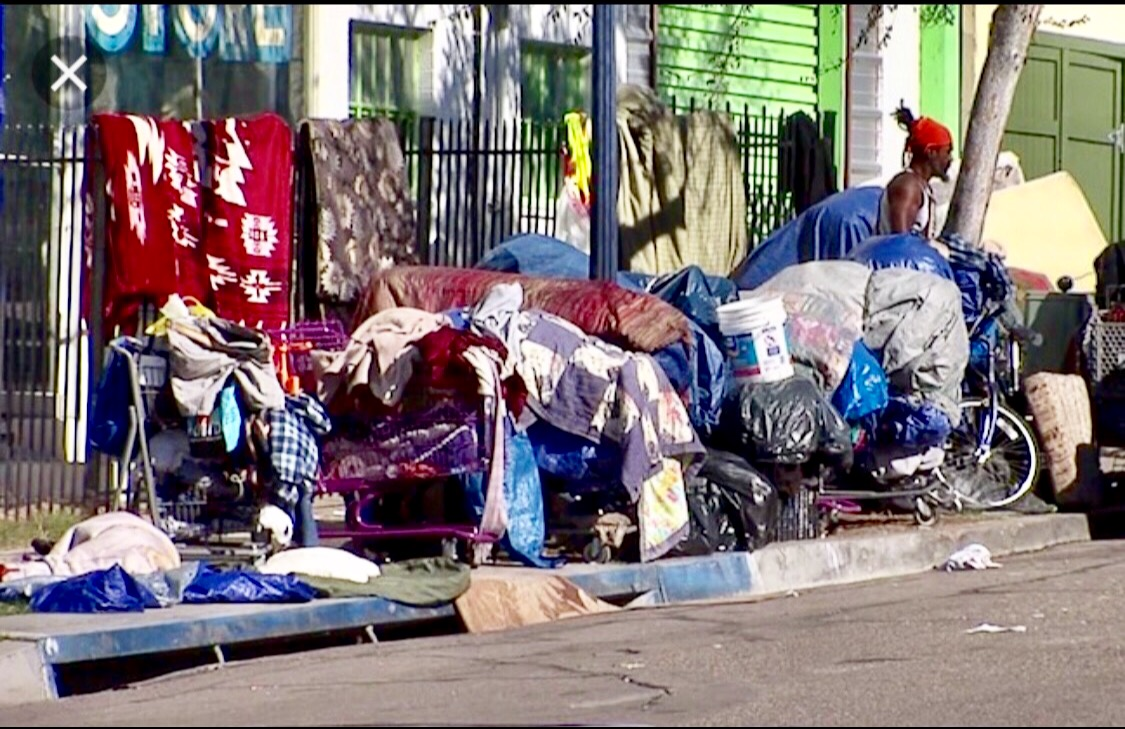 The Homeless and Typhus Intersect ~ Reaching Epidemic Numbers in LA 1125 Reads