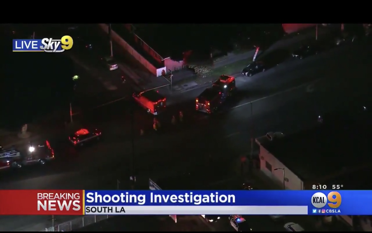 LAPD's 'shocking crime stats' speaks volumes